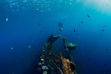 Girl freediver glides with fins at Liberty wreck ship In Bali. Freediving in blue ocean