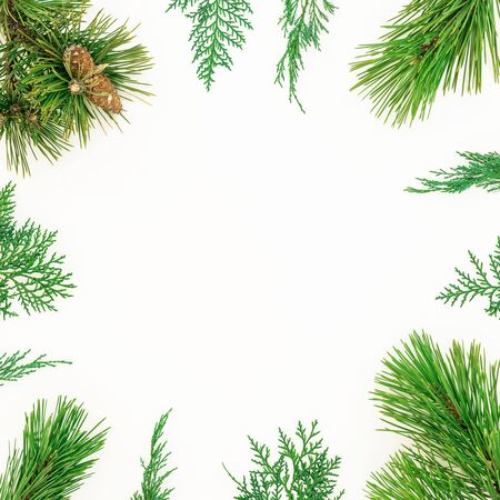 Christmas winter frame of evergreen tree branches on white background. New Year background. Flat lay, top view