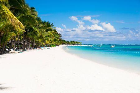 Tropical luxury beach with palms, blue ocean and sky Stok Fotoğraf