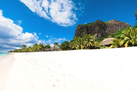 Beautiful view of tropical island. Ocean, white sand beach, palms and blue sky in Mauritius