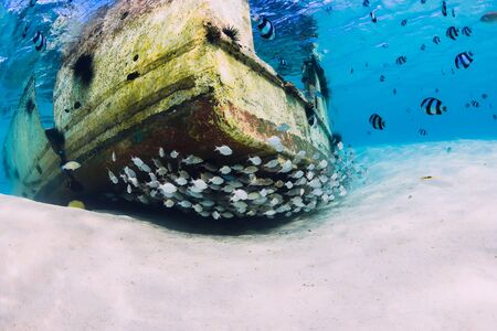 Tropical ocean with wreck of boat on sandy bottom and school of fish, underwater in Mauritius Stok Fotoğraf