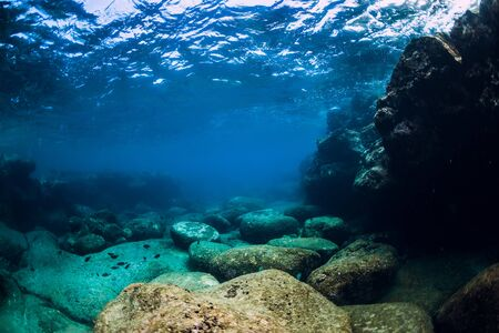 Tranquil underwater scene with copy space. Tropical transparent ocean with rock and stones