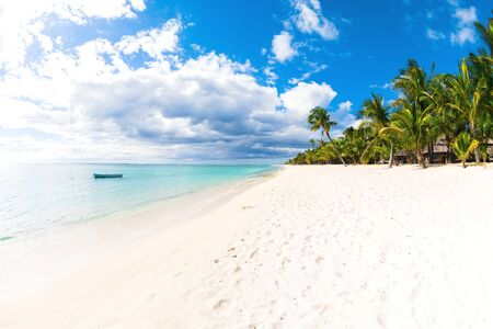 Tropical beach with ocean, white sand, coconut palms and sky