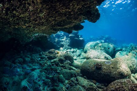 Underwater scene with rocks and stones. Tropical transparent ocean