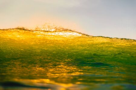 Ocean wave at sunset. Perfect wave with sunset light