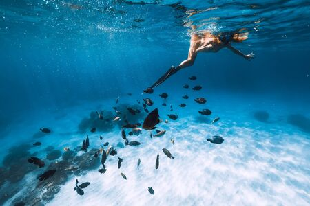 Young woman freediver in bikini snorkeling over sandy sea with fishes. Stock Photo