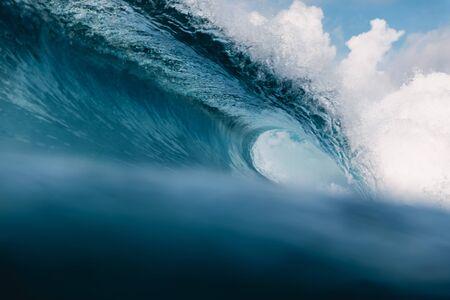 Perfect barrel wave in ocean. Breaking wave with sun light