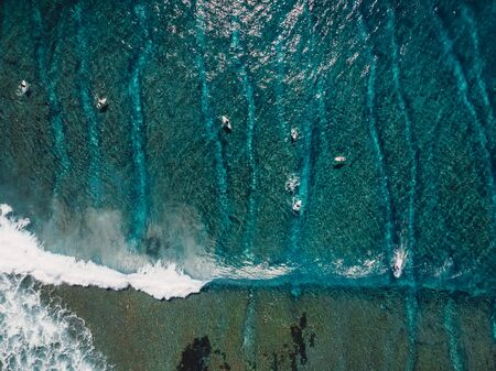 Aerial view of a lot surfers in blue ocean. Top view