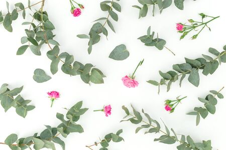 Floral pattern with roses and eucalyptus on white background. Flat lay, top view.