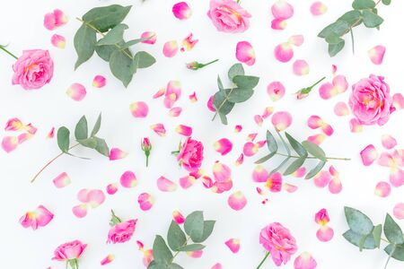 Floral pattern with pink roses flowers and eucalyptus branches on white background. Flat lay, top view.