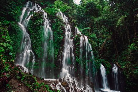 Cascade waterfall in tropical rain forest at Bali