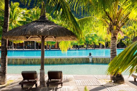 Palm luxury resort with coconut palms, pool and chaise. Tropical holiday banner