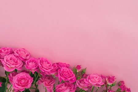 Floral composition with roses flowers on pink background. Flat lay, Top view.