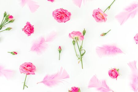 Pattern of pink roses with petals isolated on white background. Flat lay. Top view