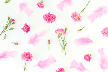 Floral pattern of pink roses flowers and feathers on white background. Flat lay, top view.