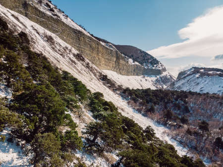 Canyon with snow and trees in winter. Aerial view of canyon with sunlight Standard-Bild