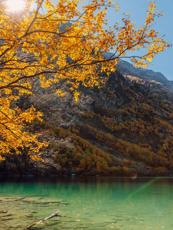 Mountain lake with transparent water and autumnal trees. Mountains and crystal lake Stok Fotoğraf