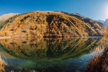 Mountain lake with reflection, autumnal trees and mountains Stok Fotoğraf
