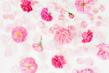 Pink floral pattern composition of rose flowers on white background. Flat lay, Top view.