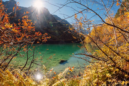 Mountain lake with transparent water and colorful autumnal trees. Mountains and crystal lake