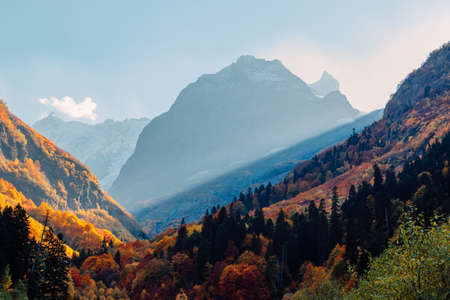 Rocky mountains and autumnal forest. High mountain landscape and amazing sun rays