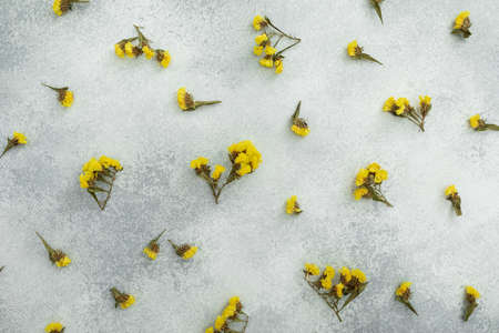 Yellow flowers on gray background. Flat lay, top view. Woman day concept.
