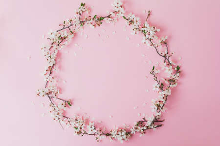 Round frame of spring flowers isolated on pastel pink background. Flat lay, top view. Spring time background.