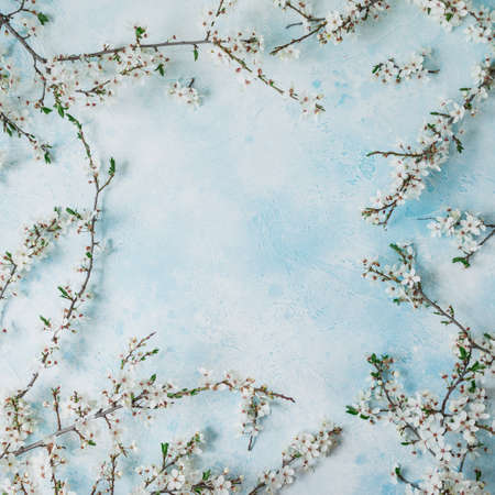Spring time floral frame of blooming spring white flowers isolated on gray background. Flat lay.