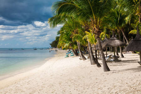 Beautiful view of luxury beach in Mauritius. Transparent beach and coconut palms
