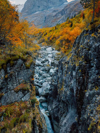 Rocky mountains, canyon and autumnal trees. Highest mountain landscape with river Stock Photo
