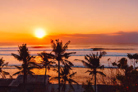 Sunset or sunrise with ocean waves and silhouette of coconut palms Stock Photo