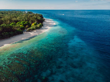 Tropical beach at paradise island with trees and ocean. Aerial view.