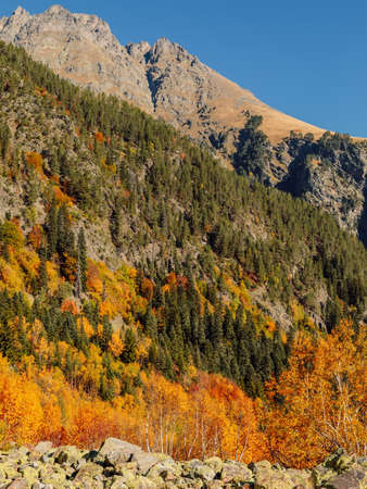 Rocky mountains and autumnal forest in Europe. Mountain landscape