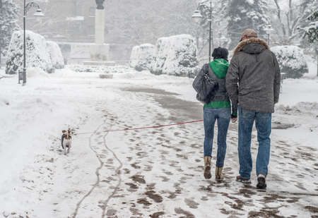 adult footprint: Couple with dog walking away from camera.