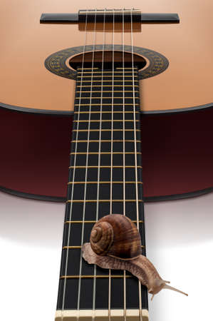 focus stacking: A Roman snail Helix pomatia slowly crawling over a guitar fretboard. Extend Depth of Field achieved with Focus Stacking technique. Stock Photo