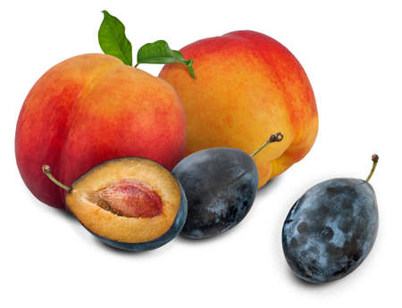 small group of objects: Peaches and plums on a white background. Stock Photo