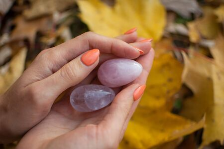 Female hands with orange manicure holding two yoni eggs made from pink quartz and transparent violet amethyst for vumfit, imbuilding or meditation on yellow fallen leaves background during autumn Archivio Fotografico