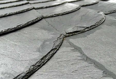 Moist slate roof