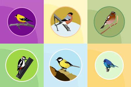 Vogels instellen
