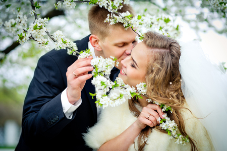 The groom is kissing the bride in branches of the blossoming cherry tree. Newlyweds in the wedding day.