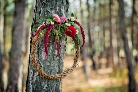 Wreath from a rod with autumn flowers hanging on a tree in the wood. Paints of fall in the coniferous wood. Zdjęcie Seryjne