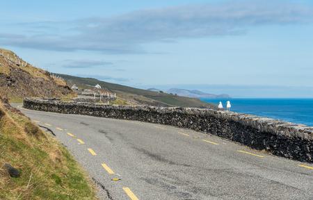 dunquin: Two sea gulls enjoying a warm sunny spring day on the Irish roads. Irish scenery in County Kerry, Dingle. Stock Photo