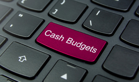 budgets: Close-up the Cash Budgets button on the keyboard and have Magenta color button isolate black keyboard