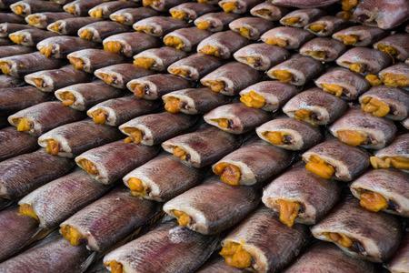 pectoralis: Trichogaster pectoralis fish dried