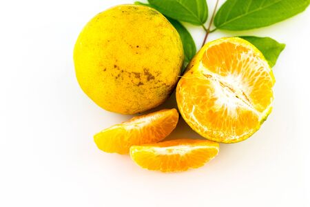 citrus family: mandarin fruit