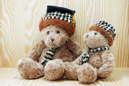 bear doll: two brown bear doll wood background