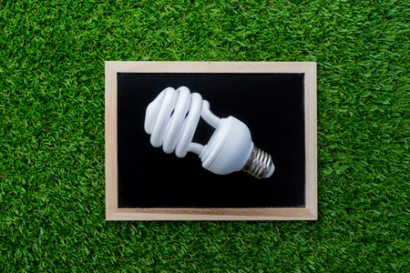 lamp on the blackboard, green grass background