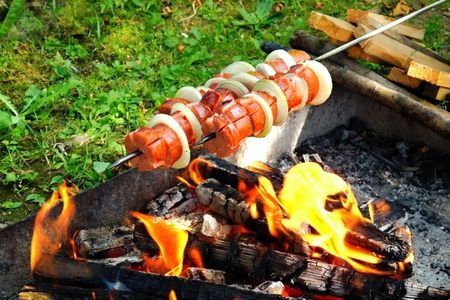 barbecue: Toasting sliced sausages with onion rings on a small little fire. Foto de archivo