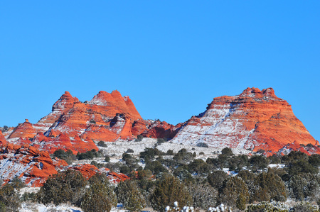 coyote: Coyote Buttes