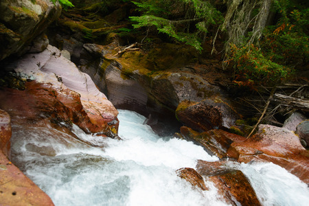 Glacier National Park: Avalanche Gorge in Glacier national park ,montana, usa